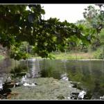 wpc-acamp-lapao_063